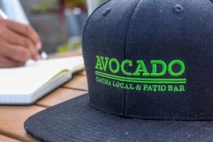Avocado-3108